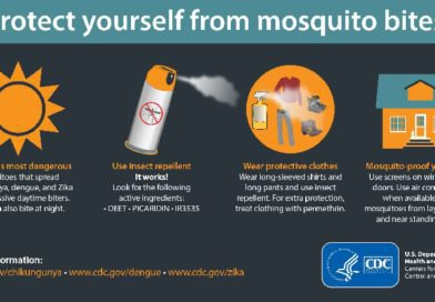 Prevent Zika Questions About Zika