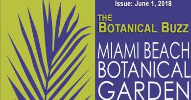 Botanical Buzz